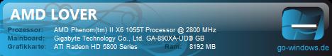 AMD LOVER
