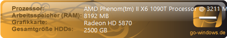 AMD X6 1095T