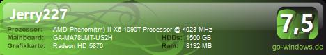 AMD Gamer