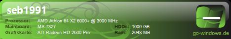Medion Professional PC
